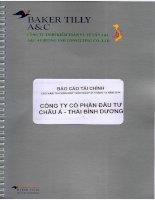 Báo cáo tài chính công ty mẹ năm 2014 (đã kiểm toán) - Công ty Cổ phần Đầu tư Châu Á - Thái Bình Dương