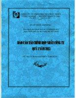 Báo cáo tài chính hợp nhất quý 1 năm 2013 - Công ty Cổ phần Đầu tư Phát triển Công nghiệp - Thương mại Củ Chi