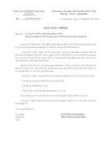 Báo cáo tài chính hợp nhất quý 4 năm 2009 - Công ty Cổ phần Nam Việt