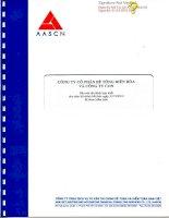 Báo cáo tài chính hợp nhất năm 2012 (đã kiểm toán) - Công ty Cổ phần Bê tông Biên Hòa