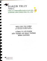 Báo cáo tài chính quý 2 năm 2012 (đã soát xét) - Công ty Cổ phần Xây dựng và Giao thông Bình Dương