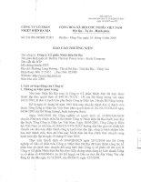 Báo cáo thường niên năm 2008 - Công ty Cổ phần Nhiệt điện Bà Rịa