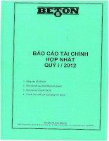 Báo cáo tài chính hợp nhất quý 1 năm 2012 - Công ty Cổ phần Beton 6