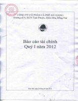 Báo cáo tài chính quý 1 năm 2012 - Công ty Cổ phần Cà phê An Giang