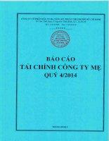 Báo cáo tài chính công ty mẹ quý 4 năm 2014 - Công ty cổ phần Đầu tư Hạ tầng Kỹ thuật T.P Hồ Chí Minh