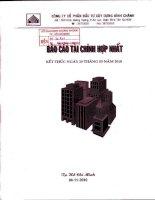 Báo cáo tài chính hợp nhất quý 3 năm 2010 - Công ty Cổ phần Đầu tư Xây dựng Bình Chánh
