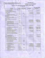 Báo cáo tài chính quý 3 năm 2014 - Công ty Cổ phần Khoáng sản Vinas A Lưới
