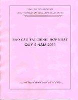 Báo cáo tài chính hợp nhất quý 2 năm 2011 - Công ty Cổ phần Xây dựng và Kinh doanh Vật tư
