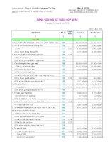 Báo cáo tài chính hợp nhất quý 3 năm 2010 - Công ty Cổ phần Alphanam E&C