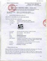 Báo cáo thường niên năm 2012 - Công ty Cổ phần Sơn Á Đông