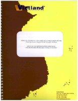 Báo cáo tài chính năm 2013 (đã kiểm toán) -  Công ty Cổ phần Tư vấn thiết kế và Phát triển đô thị