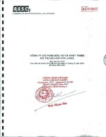 Báo cáo tài chính năm 2010 (đã kiểm toán) - Công ty cổ phần Đầu tư và Phát triển Đô thị Dầu khí Cửu Long