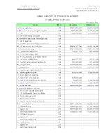 Báo cáo tài chính quý 2 năm 2010 - Công ty cổ phần Vicem Bao bì Bỉm Sơn