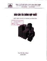 Báo cáo tài chính hợp nhất quý 4 năm 2010 - Công ty Cổ phần Đầu tư Xây dựng Bình Chánh