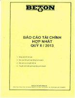 Báo cáo tài chính hợp nhất quý 2 năm 2013 - Công ty Cổ phần Beton 6