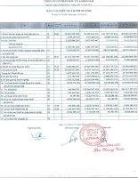 Báo cáo KQKD công ty mẹ quý 4 năm 2012 - Công ty Cổ phần Đầu tư Alphanam
