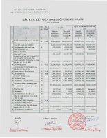 Báo cáo tài chính quý 4 năm 2011 - Công ty Cổ phần Chế biến và Xuất nhập khẩu Thủy sản CADOVIMEX