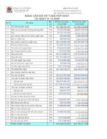 Báo cáo tài chính hợp nhất năm 2009 (đã kiểm toán) - Công ty Cổ phần Xây dựng 47