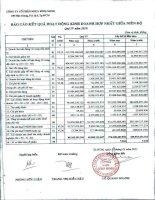 Báo cáo KQKD hợp nhất quý 4 năm 2010 - Công ty Cổ phần Nhựa Bình Minh