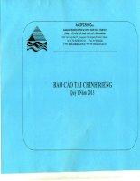 Báo cáo tài chính công ty mẹ quý 1 năm 2013 - Công ty Cổ phần Xuất nhập khẩu Thủy sản An Giang