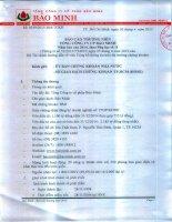 Báo cáo thường niên năm 2014 - Tổng Công ty Cổ phần Bảo Minh