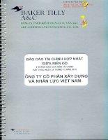 Báo cáo tài chính hợp nhất quý 2 năm 2015 (đã soát xét) - Công ty cổ phần Xây dựng và Nhân lực Việt Nam