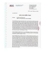 Báo cáo tài chính năm 2007 (đã kiểm toán) - Công ty cổ phần Xuất nhập khẩu An Giang