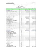 Báo cáo tài chính quý 2 năm 2009 - Công ty cổ phần Vicem Bao bì Bỉm Sơn