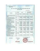 Báo cáo tài chính năm 2009 - Công ty Cổ phần Khoáng sản Becamex
