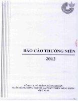 Báo cáo thường niên năm 2012 - Công ty Cổ phần Chứng khoán Nông nghiệp và Phát triển Nông thôn