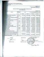 Báo cáo KQKD công ty mẹ quý 3 năm 2012 - Công ty Cổ phần Đầu tư Xây dựng Bình Chánh