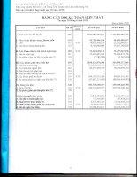 Báo cáo tài chính hợp nhất quý 2 năm 2013 - Công ty Cổ phần Đầu tư Alphanam
