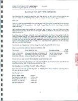 Báo cáo tài chính hợp nhất năm 2011 (đã kiểm toán) - Công ty Cổ phần Nhựa Bình Minh