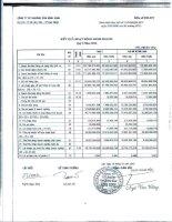 Báo cáo KQKD quý 2 năm 2012 - Công ty cổ phần Khoáng sản Bình Định
