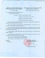 Báo cáo tài chính năm 2012 (đã kiểm toán) - Công ty cổ phần Chứng khoán Ngân hàng Đầu tư và Phát triển Việt Nam