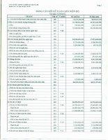 Báo cáo tài chính công ty mẹ quý 1 năm 2011 - Công ty Cổ phần Đầu tư Phát triển Công nghiệp - Thương mại Củ Chi