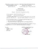 Báo cáo tài chính quý 3 năm 2012 - Công ty Cổ phần Cát Lợi