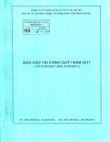 Báo cáo tài chính quý 1 năm 2011 - CTCP Sản xuất Kinh doanh Dược và Trang thiết bị Y tế Việt Mỹ