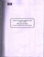 Báo cáo tài chính năm 2013 (đã kiểm toán) - Công ty Cổ phần Khoáng sản Vinas A Lưới