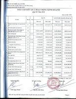 Báo cáo KQKD quý 3 năm 2010 - Công ty Cổ phần Chiếu xạ An Phú