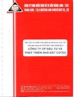 Báo cáo tài chính công ty mẹ quý 2 năm 2011 (đã soát xét) - Công ty Cổ phần Đầu tư và Phát triển Nhà đất COTEC