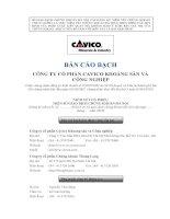 Bản cáo bạch - Công ty cổ phần CMISTONE Việt Nam