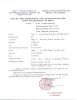 Báo cáo tài chính công ty mẹ quý 1 năm 2016 - Công ty cổ phần Chứng khoán Ngân hàng Đầu tư và Phát triển Việt Nam