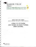 Báo cáo tài chính năm 2010 (đã kiểm toán) - Công ty Cổ phần Xây dựng và Giao thông Bình Dương