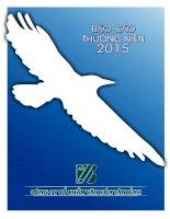 Báo cáo thường niên năm 2015 - Công ty Cổ phần Văn hóa Tân Bình