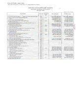 Báo cáo tài chính hợp nhất quý 4 năm 2011 - Công ty Cổ phần Nam Việt