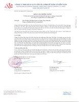 Báo cáo tài chính năm 2010 (đã kiểm toán) - Công ty cổ phần Đầu tư tài chính BIDV