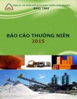 Báo cáo thường niên năm 2015 - Công ty cổ phần Đầu tư và Phát triển Công nghiệp Bảo Thư