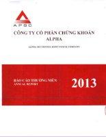 Báo cáo thường niên năm 2013 - Công ty Cổ phần Chứng khoán ALPHA