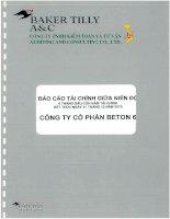 Báo cáo tài chính công ty mẹ quý 2 năm 2013 (đã soát xét) - Công ty Cổ phần Beton 6